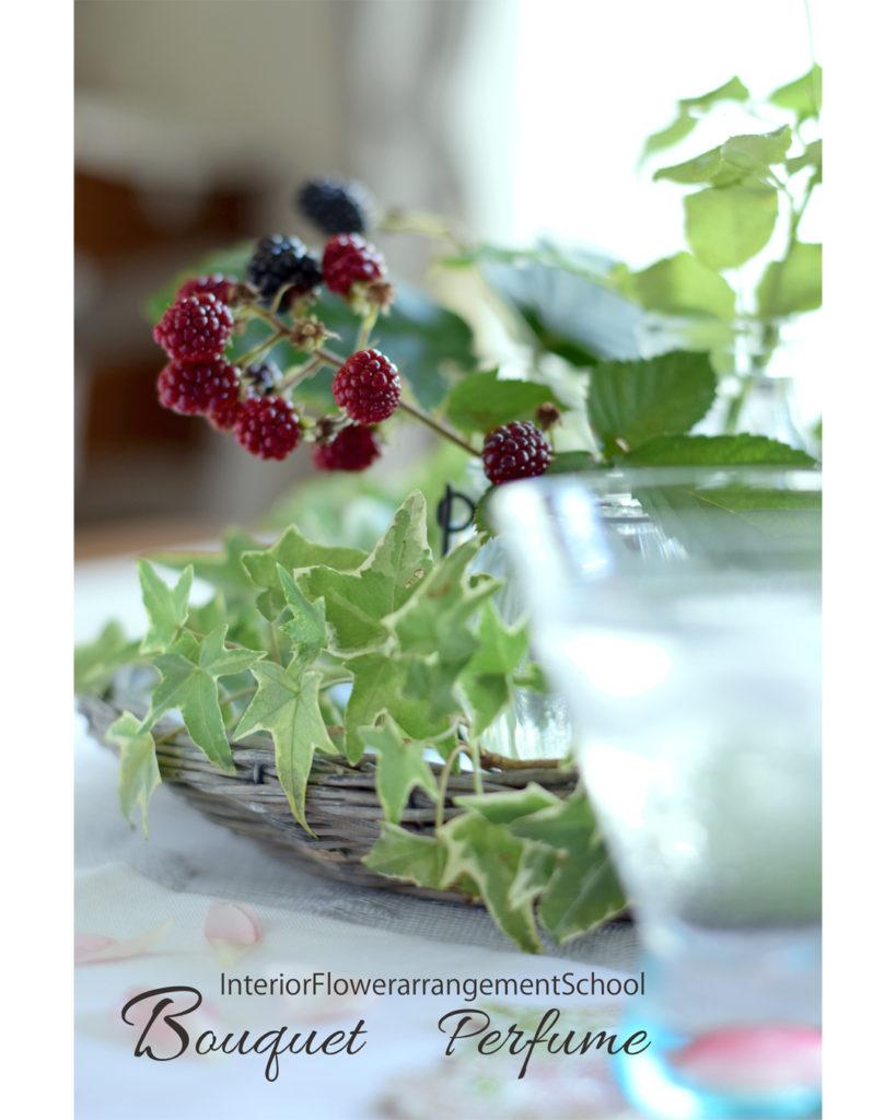夏の花 実もの 赤い実