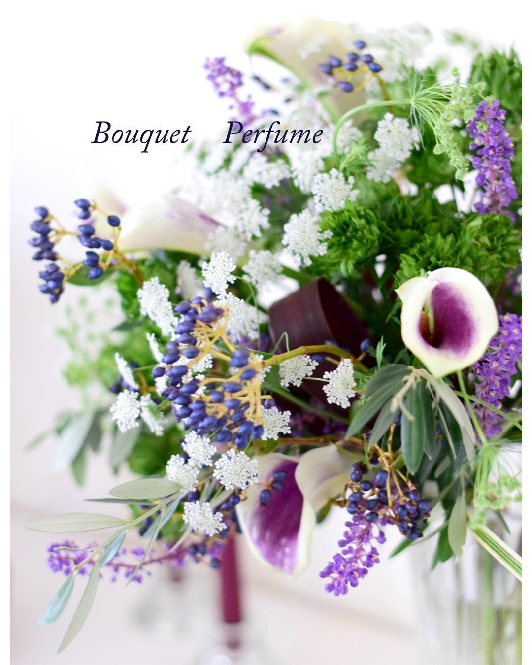 カラー 紫の花