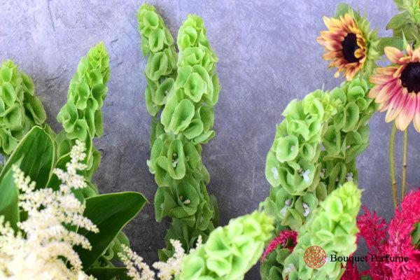 グリンの花